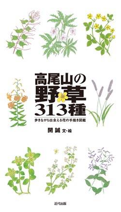 高尾山の野草313種
